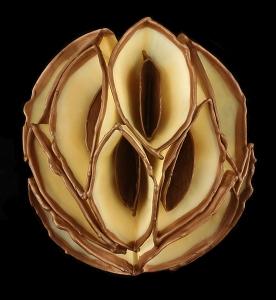 Helen Donally - Amber Bronze Stripe 11x9.5x5