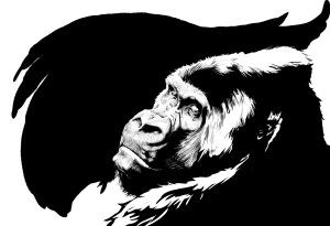 Arianna Cabebe Gorilla