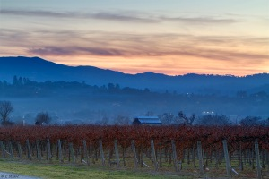 Cheryl Strahl Sunset From The Vineyard