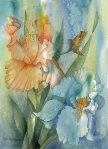 Shirley Horacek Watercolor Flowers