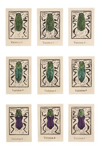 Helen K Davie 1 An Inordinate Fondness for Beetles