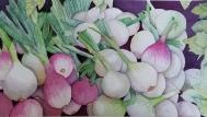 Spring Bounty by Mary Kopecky