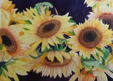 Sunflower Explosion by Mary Kopecky
